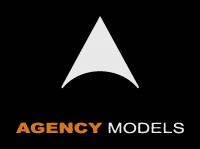 Agency Models - Brazil