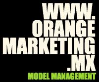 Orange Marketing Model Management