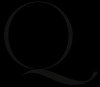 Q Model Management - New York