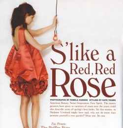 S\'like a Red, Red Rose
