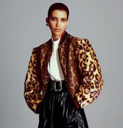 The Print: Leopard