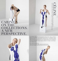 Carine On The Collections. A New Perspective