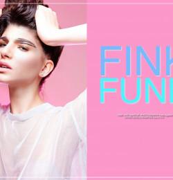 Fink Funk