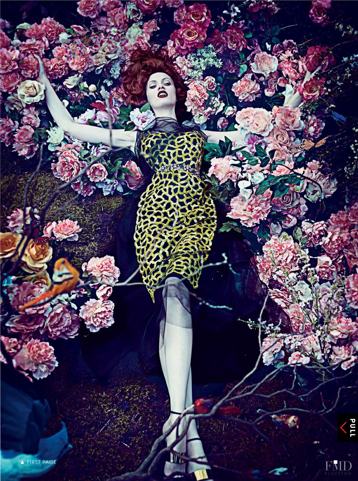 Hothouse Flowers in Vogue USA with Karen Elson ID 6663 Fashion Editoria