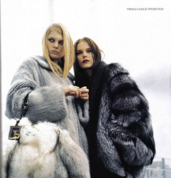 Fur for Fashionistas