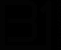 B1 Model Management