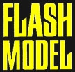 Flash Model Management - Istanbul