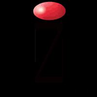 IZ Representation