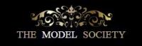 MSI - The Model Society