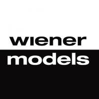 Wiener Models