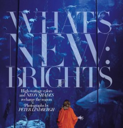 What\'s New: Brights