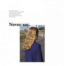 Never Say ...