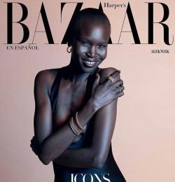Alek Wek - Gallery with 23 magazine covers - Fashion Model
