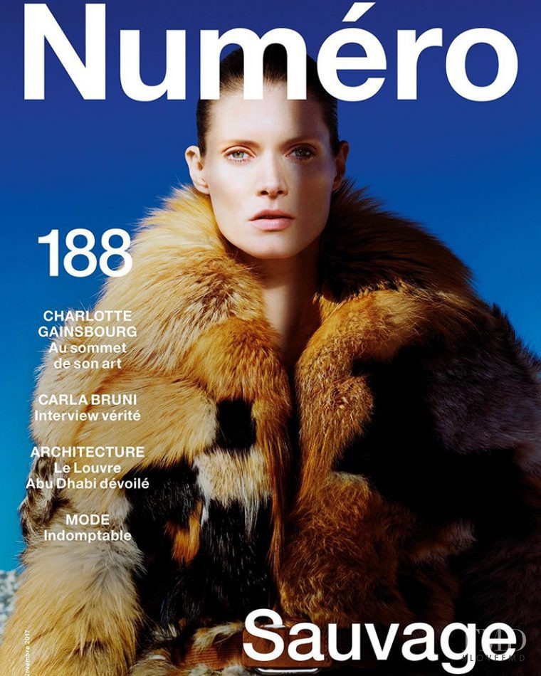 Malgosia Bela featured on the Numéro France cover from November 2017