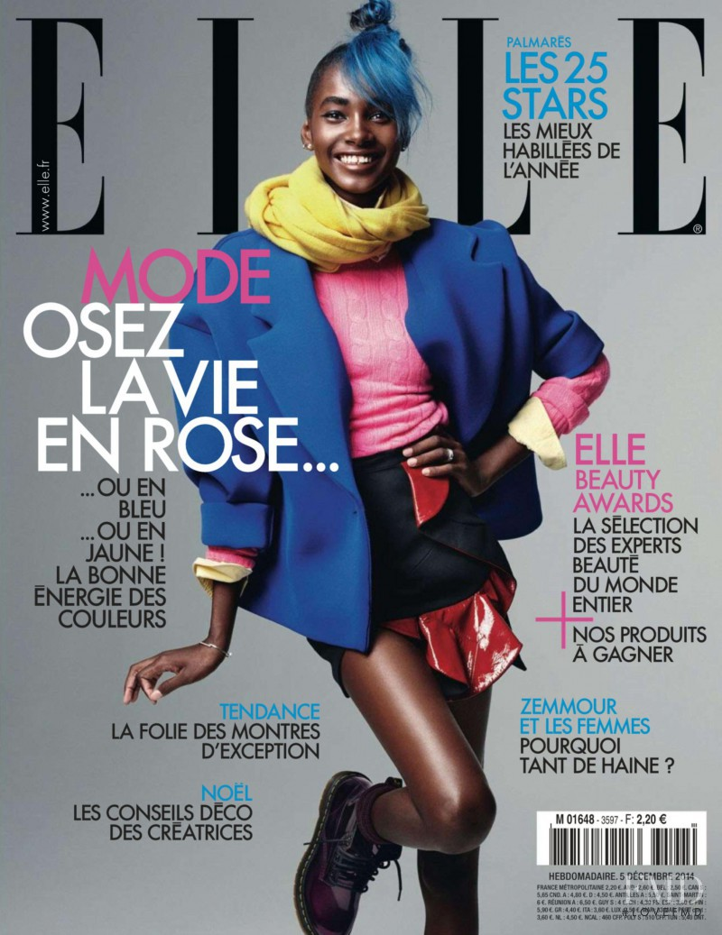 Tami Williams featured on the Elle France cover from December 2014