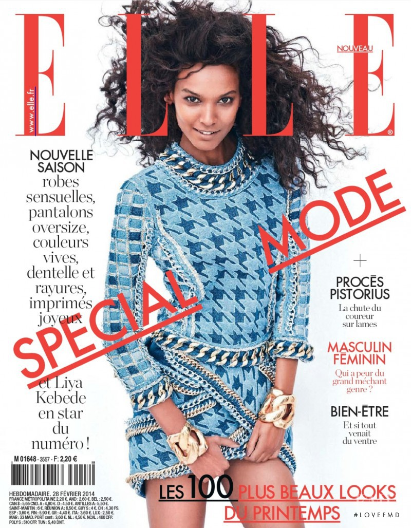 Liya Kebede featured on the Elle France cover from February 2014