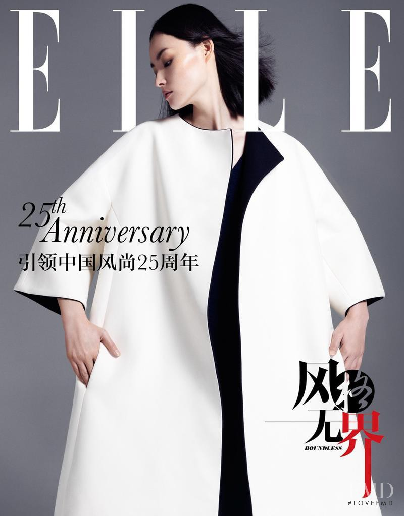 Miao Bin Si featured on the Elle China cover from October 2013