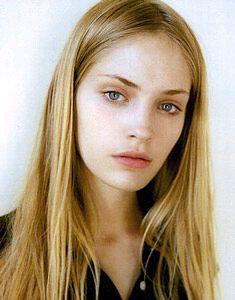 TTL Heidi Model