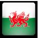 British (Welsh)